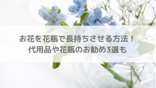 お花を花瓶で長持ちさせる方法!水の替え時、10円玉効果は?代用品や花瓶のお勧め3選も