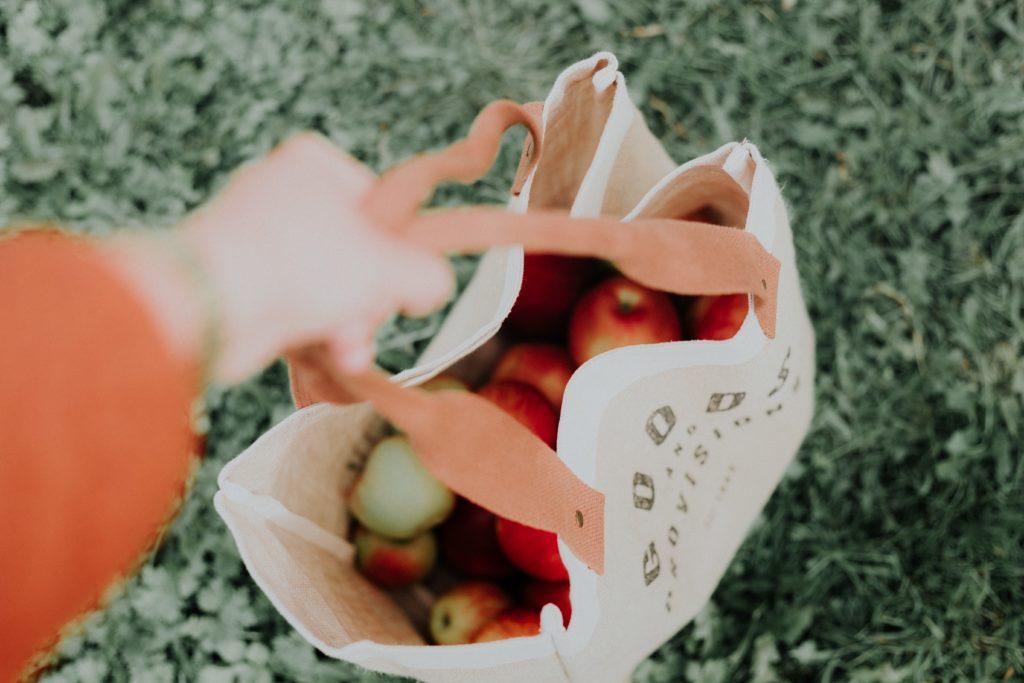 レジ袋有料化のために!エコバッグおすすめ3選