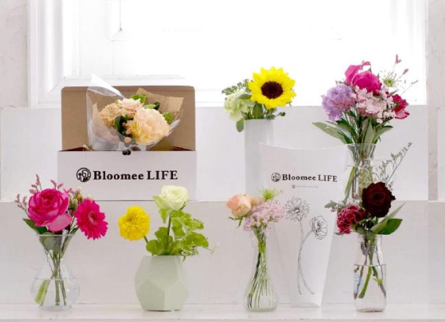 お花の定期便(サブスク)Bloomee LIFE(ブルーミー ライフ)